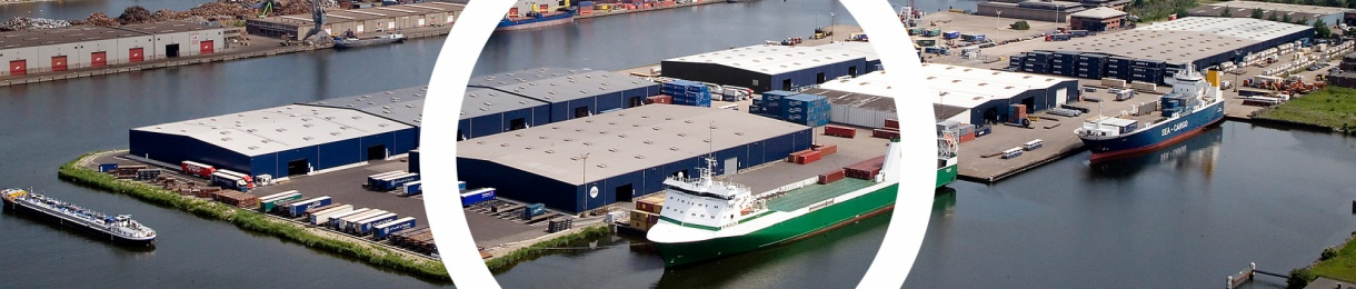 RoRo and multipurpose terminal